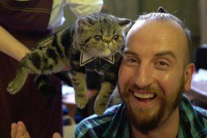海外「不機嫌な顔の猫が可愛すぎて死にそう。」日本の猫カフェに世界が悶絶(海外の反応)