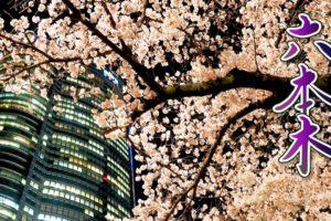海外「ライトアップされた桜は本当に壮観だね!」ライトアップされた六本木の満開の桜が話題に(海外の反応)