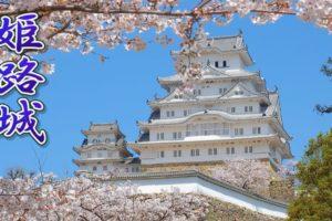 海外「なんて完璧な組み合わせ」姫路城の満開の桜を撮影した動画が話題に(海外の反応)